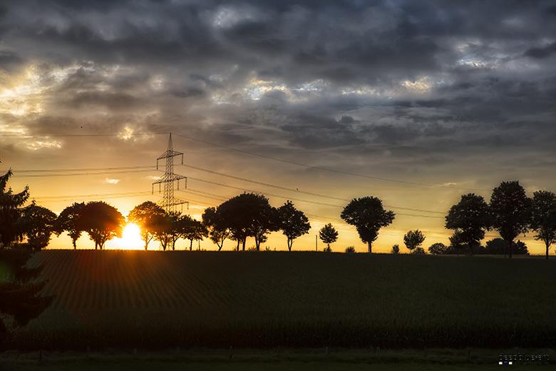 Countyside Evening