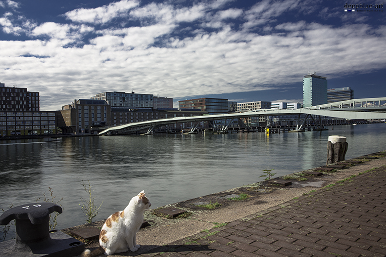 Amsterdam Hafencity